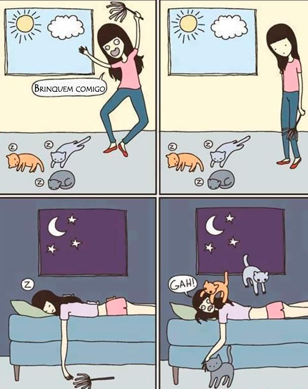 logica-dos-gatos-015