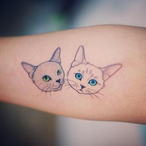 pet tatoo 6