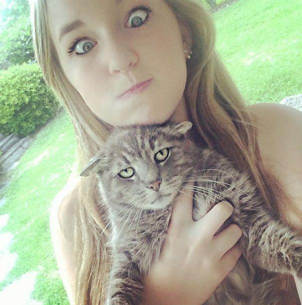 gatos odeiam 4