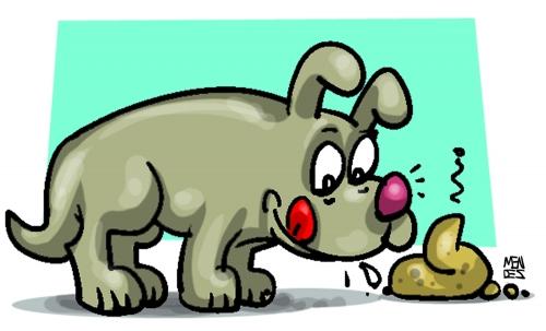 cão se lambendo cheirando as fezes