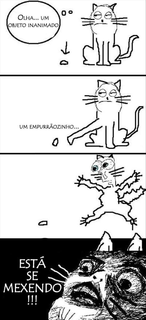 logica-dos-gatos-017