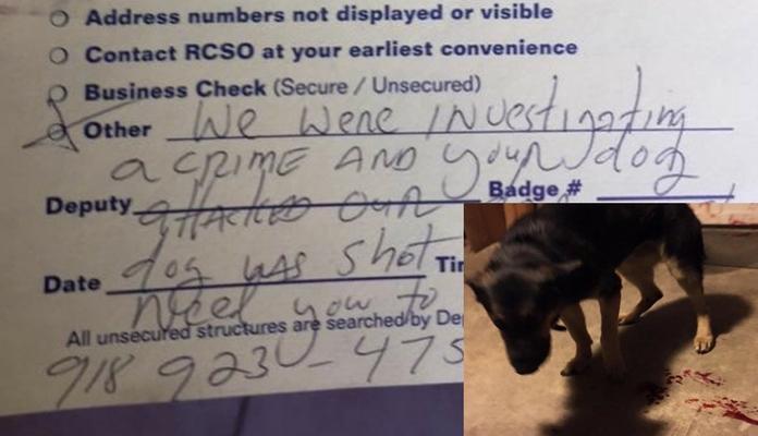 Família chega em casa e encontra cão baleado e um bilhete explicando o motivo.