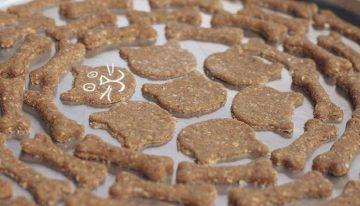 Substitua o Biscrok tradicional do seu pet por Snacks caseiros, super nutritivos e feitos por você.