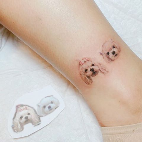 tatoo pet