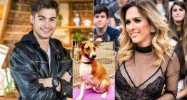 Tata Werneck e Rafa Vitti adotam cachorro que foi vítima de maus-tratos