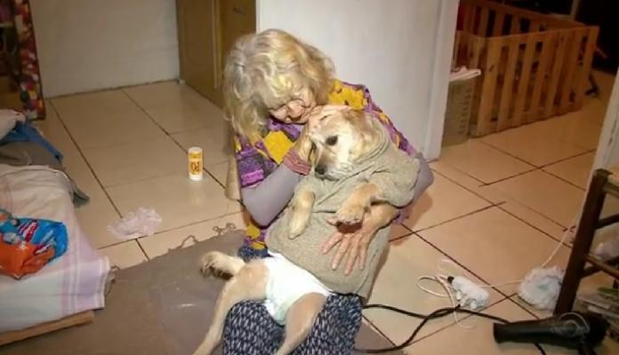 Idosa de 80 anos cuida de uma cadelinha que perdeu os movimentos