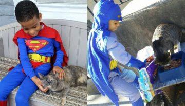 Menino de 5 anos ajuda a salvar gatos de rua e se torna seu super-herói