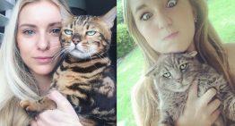 12 imagens provam que os gatos odeiam tirar fotos