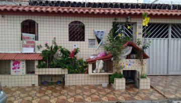 Idosa cria hotel para animais de rua na porta de casa