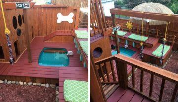 Tutor transforma seu quintal em um parque de jogos para seus 4 cães