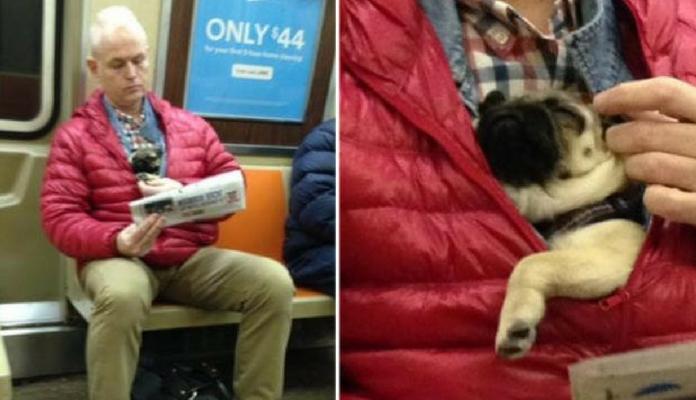 Jovem encontra o melhor assento no trem, e o motivo é muito fofo