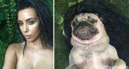 6 selfies de Doug the Pug inspiradas em Kim Kardashian