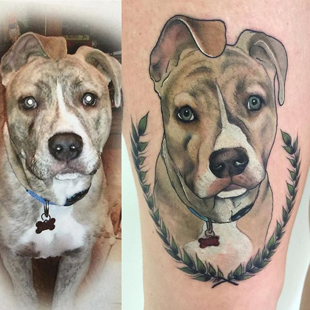 tatuagens para amantes de cães da Pit Bull