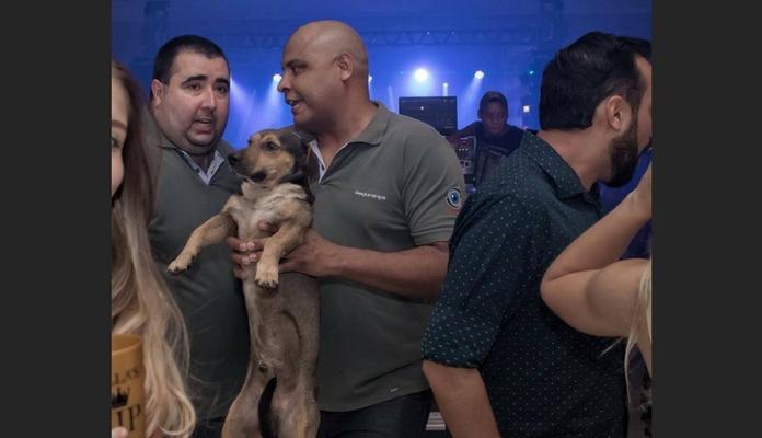 """Cachorro é """"expulso"""" de festa e viraliza nas redes sociais"""