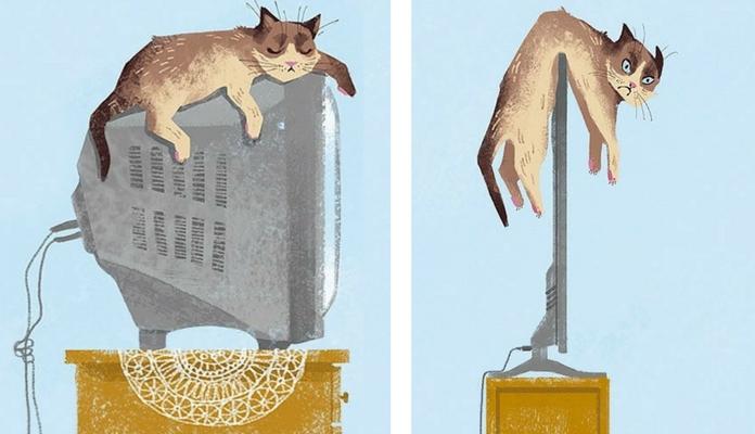 Como a tecnologia mudou a vida dos gatos em 12 imagens