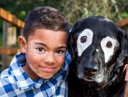Cachorro com vitiligo traz auto-estima à menino com a mesma doença