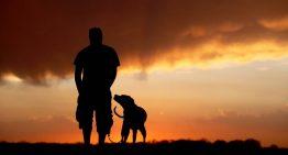 Cachorro com cinomose prova que homem da caverna já amava cães