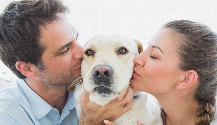 Você sabia? Cães ajudam você a conquistar um novo amor!